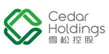 深圳前海雪松金融服務有限公司