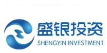 上海盛银投资控股有限公司
