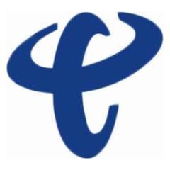 中國電信國際有限公司