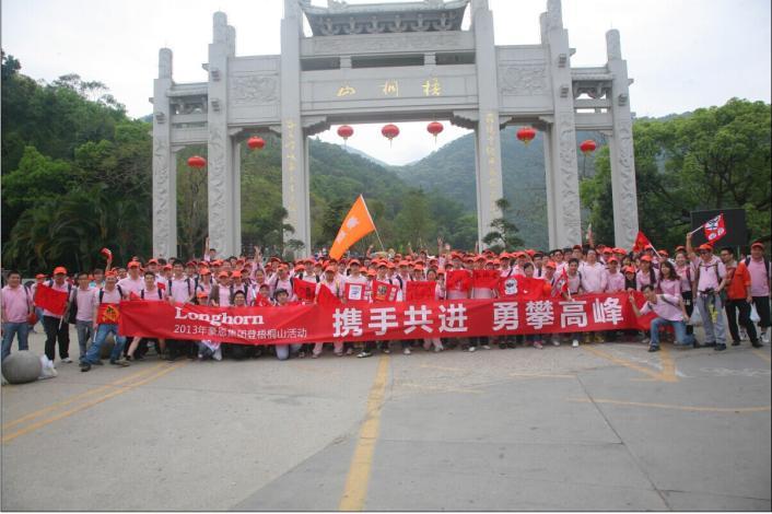 深圳市豪恩科技集团股份有限公司
