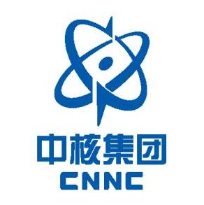中核工程咨询有限公司