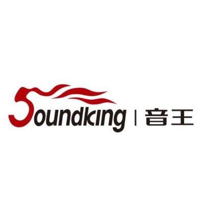 音王電聲股份有限公司