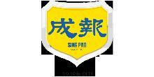 成报传媒集团(香港)有限公司