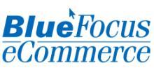 蓝色光标电子商务(上海)有限公司