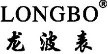 深圳市龙波表业有限公司