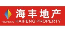 广州市海丰房地产代理有限公司