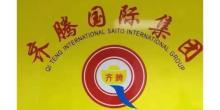 深圳市齐腾财神汇信息咨询有限公司天津分公司