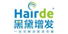 上海黑黛增发服务股份有限公司