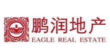 重庆鹏泽房地产开发有限公司(分支机构)
