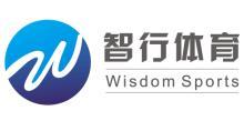 深圳智行体育投资有限公司