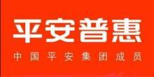 平安普惠投资咨询有限公司南京长江路分公司