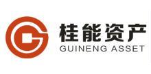 重庆桂能资产管理有限公司
