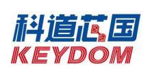 四川科道芯国智能技术股份有限公司