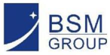 锦丰科技集团(BSM GROUP)