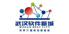 武汉软件新城发展有限公司