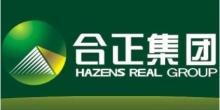 深圳市合正房地產集團有限公司