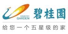 碧桂园营销中心-西北区域(二部)(分支机构)