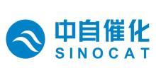 中自环保科技股份有限公司