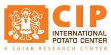 国际马铃薯中心亚太中心(中国)