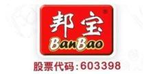广东邦宝益智玩具股份有限公司