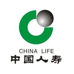 中国人寿财产保险股份有限公司郑州市中心支公司