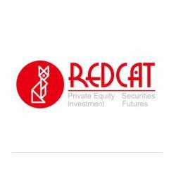 广州红猫资产管理有限公司