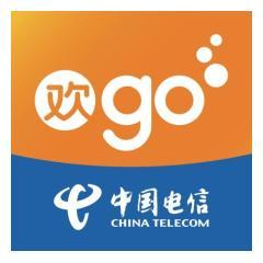 中国电信电子渠道运营中心