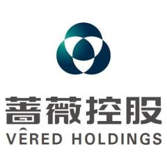 蔷薇控股股份有限公司