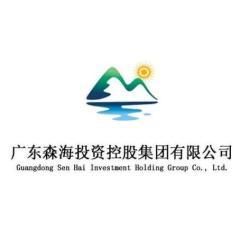 广东森海投资控股有限公司招聘