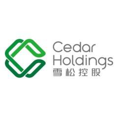 深圳前海雪松金融服务有限公司