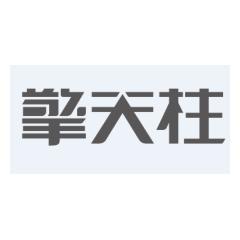 广州市擎天柱网络科技有限公司
