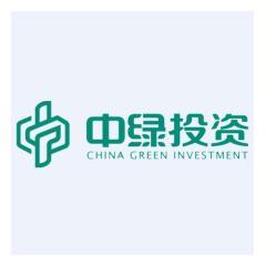 福建中绿投资有限公司