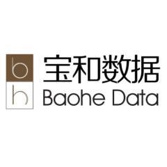 江苏宝和数据股份有限公司