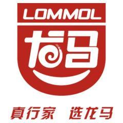 广东龙马新材料科技有限公司