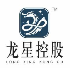 中国龙星行控股有限公司