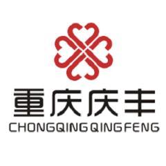 重庆西铝庆丰金属材料有限公司
