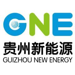 贵州新能源开发投资股份有限公司
