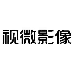 视微影像(河南)科技有限公司