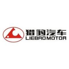 湖南长丰汽车服务有限责任公司