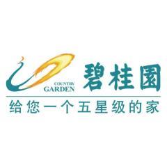 碧桂园营销中心-云南区域