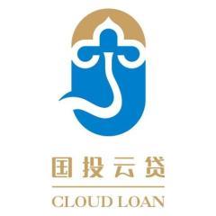 国投(宁夏)互联网小额贷款股份有限公司