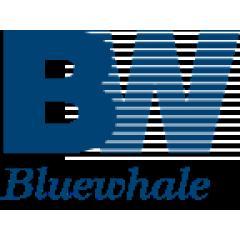 北京蓝鲸兴业国际能源咨询有限公司
