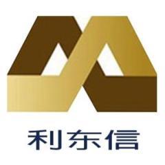 武汉利东信建设工程有限公司