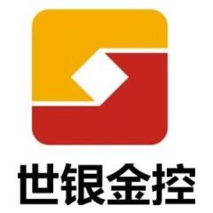 安徽世银金融控股集团股份有限公司