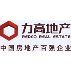 力高(中国)地产有限公司
