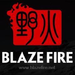 上海野火网络科技有限公司