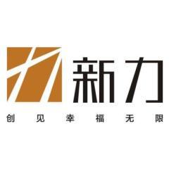 中山新力力创房地产开发有限公司