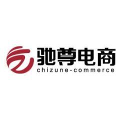 上海驰尊电子商务有限公司