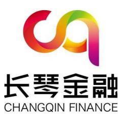 上海长琴金融信息服务有限公司
