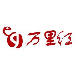 北京万里红科技股份有限公司
